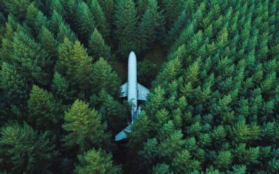 L'aeroplano nella foresta