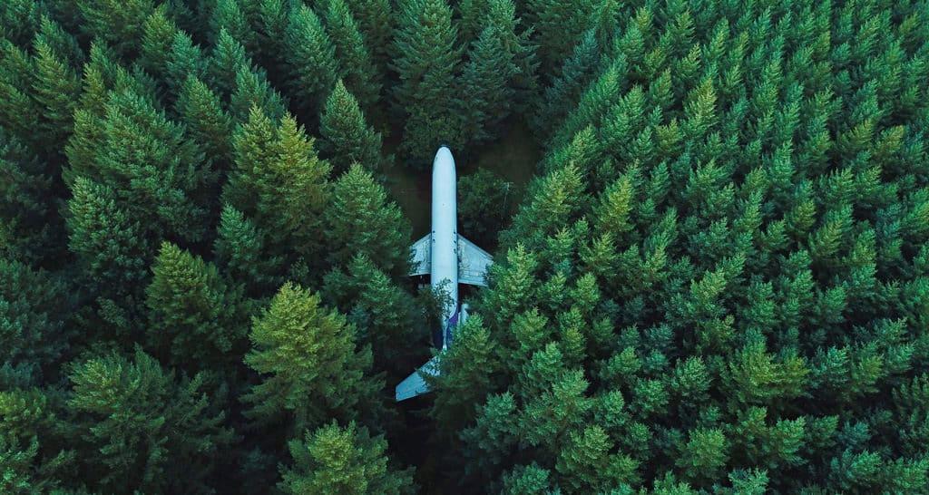 aeroplano nella foresta