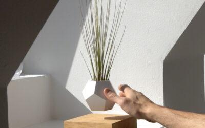 Le piante sospese di Simon Morris
