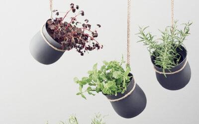 9 diverse soluzioni per creare un giardino interno