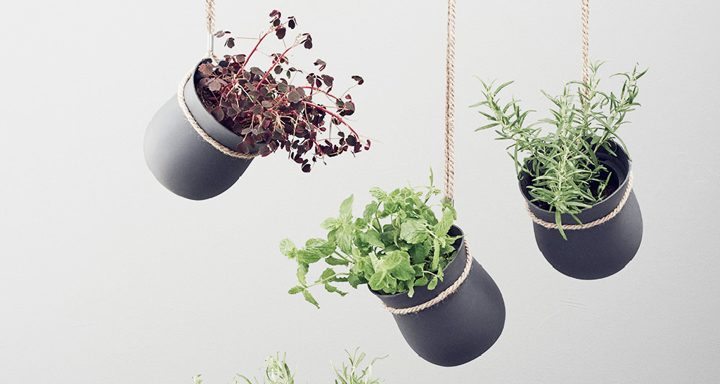 9 diverse soluzioni per creare un giardino interno for Soluzioni per dividere giardino