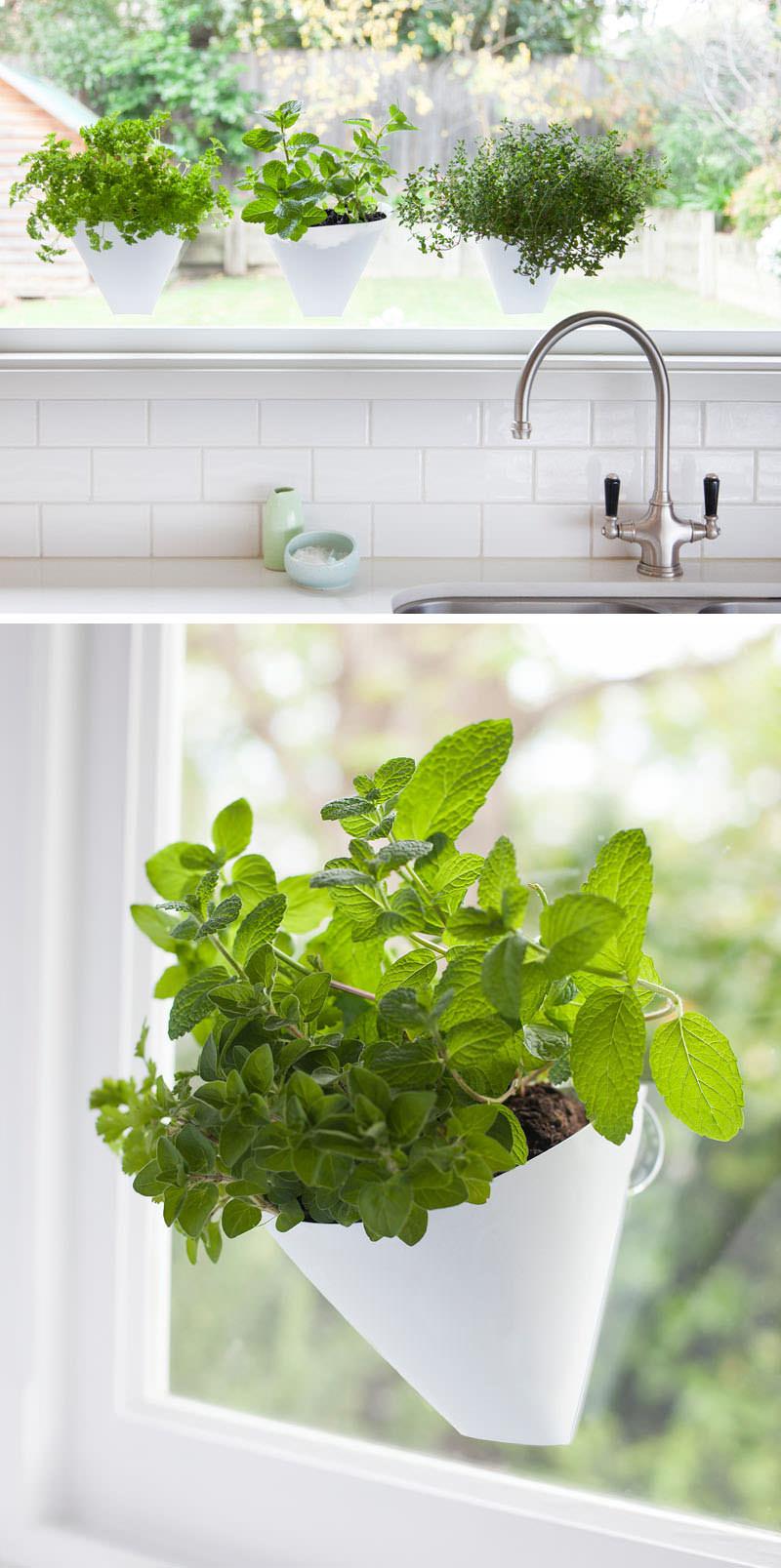 9 diverse soluzioni per creare un giardino interno for Soluzioni per delimitare un giardino