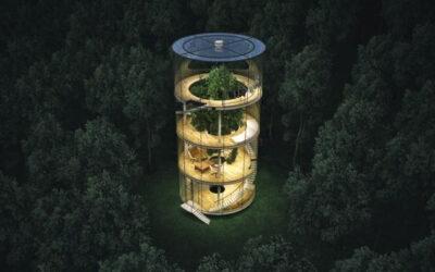 La casa costruita intorno all'albero di Aibek Almasov