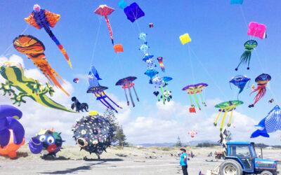 Un drago ed altri animali volanti, Peter Lynn Kites