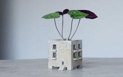 Piccole architetture dove crescere piccole piante