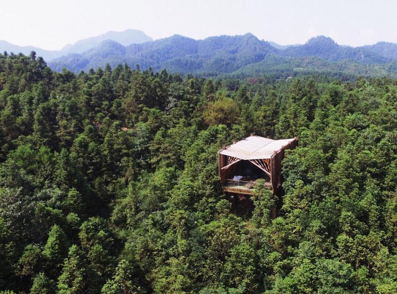 treehouse-m-2