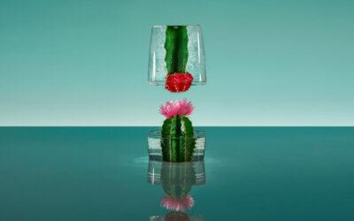 I fiori congelati di Paloma Rincon
