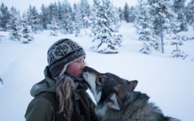 """Vivere nella natura selvaggia, """"Artic Love"""" di Brice Portolano"""
