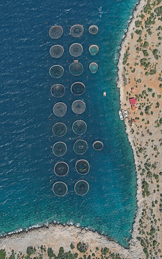coltivazioni costiere