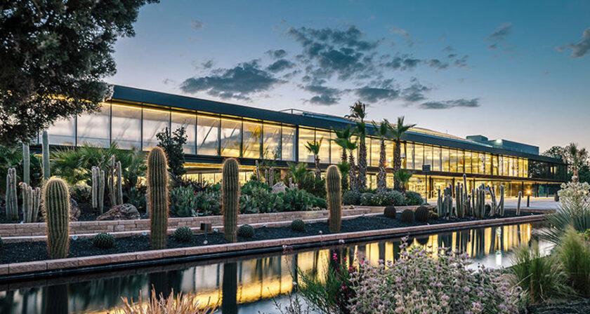 terra dei Cactus
