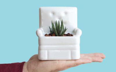 Plant-Life, i vasi che le piante desiderano
