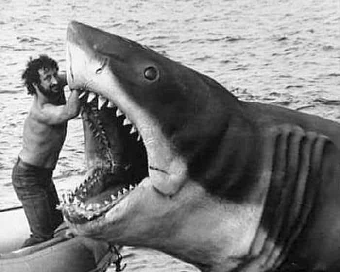 steven-spielberg-fixing-bruce-the-shark-that-never-worked-properly-always-breaking-down-and-very-nearly-bankrupt-the-film-before-they-finnished-it