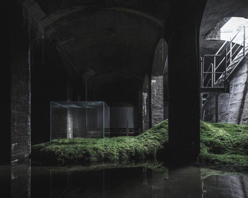 the Water Copenaghen