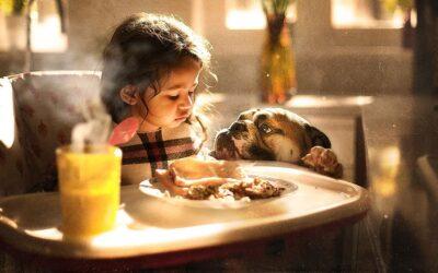 L'amore per il proprio cane nella dolce serie di Sujata Setia