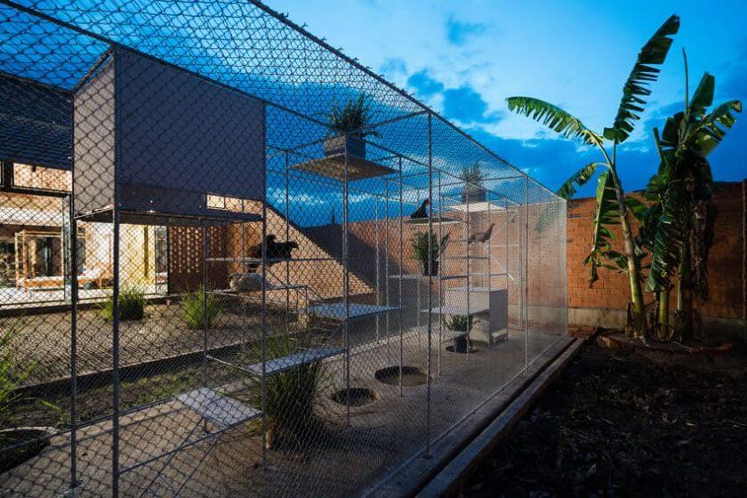 architettura per i polli