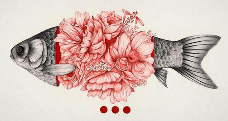 illustrazioni-di-pesci-7