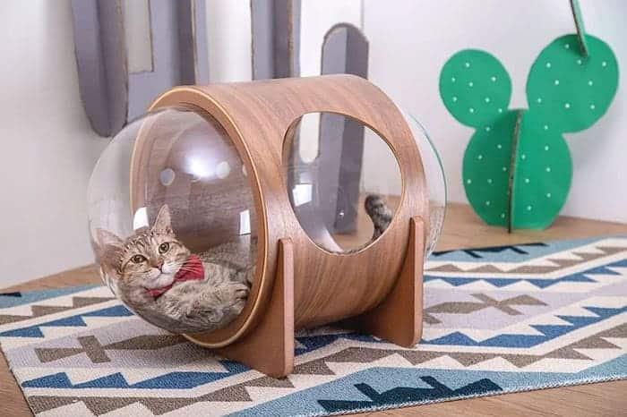 cuccia-per-gatti-myzoo-studio-17