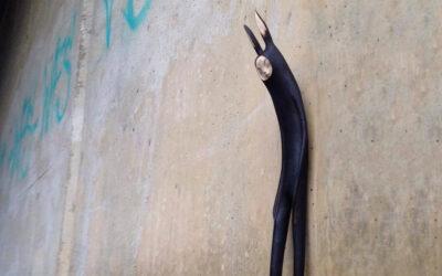 Le misteriose creature intagliate dalle radici da Tach Pollard