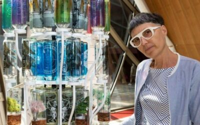 Il design delle bottiglie in vetro si trasforma con O-I : EXPRESSIONS
