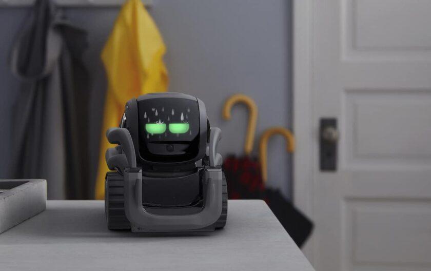 Vector, un piccolo robot da compagnia