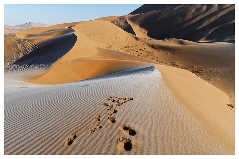 deserto-ciense-2