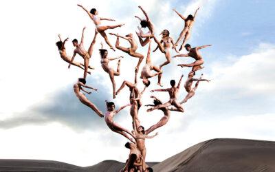 I ballerini nello spazio surreale di Rob Woodcox