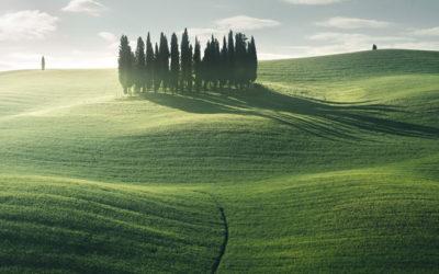 La spettacolare nebbia della Toscana nei paesaggi di Stef Kocyla