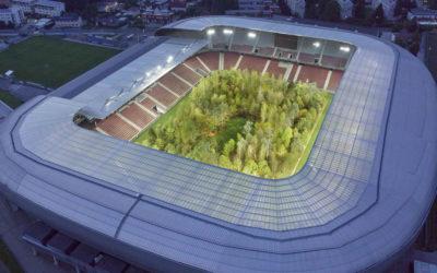 La foresta nello stadio, Klaus Littmann