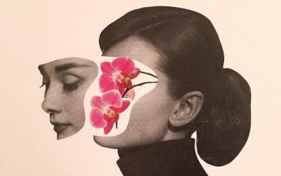 I collage di Adam Hale come istantanea della società contemporanea