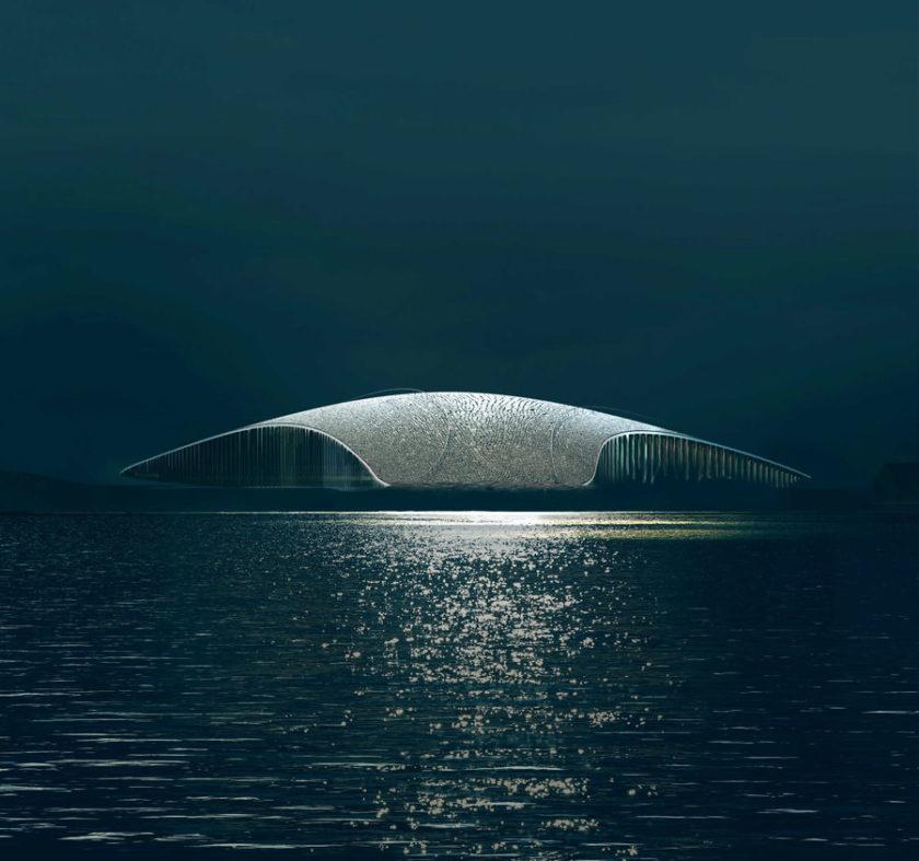The Whale - Norvegia