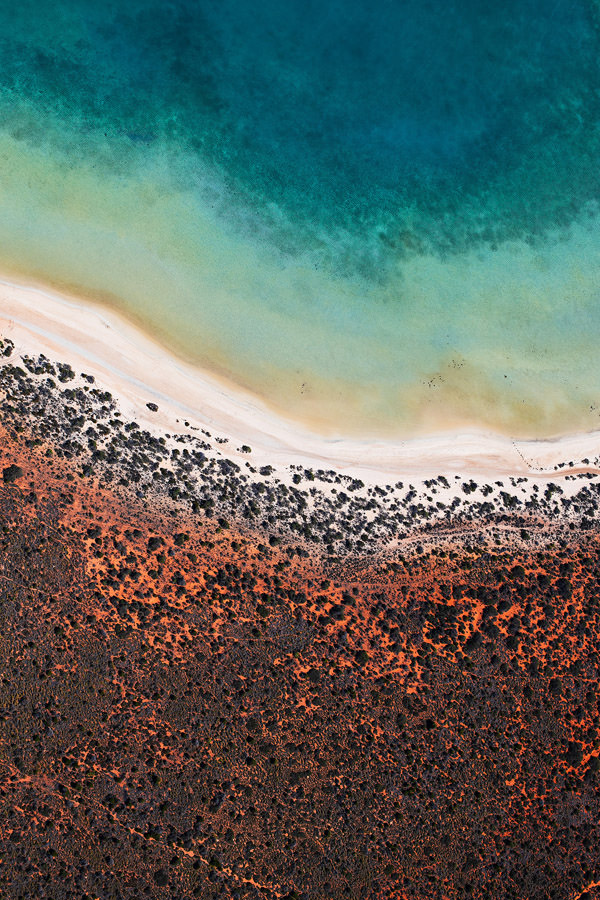 Shark Bay - Australia