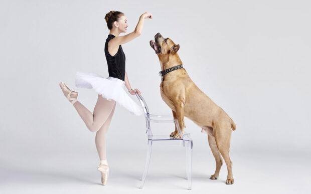 Ballerini in danza coi propri cani