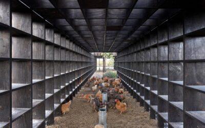 Alloggi collettivi per polli, Kengo Kuma