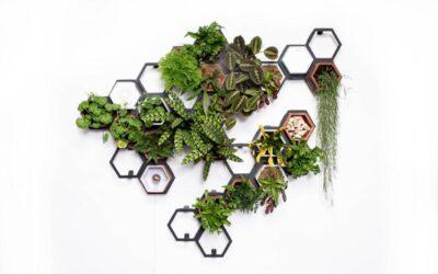 Il muro verde modulare di Horticus