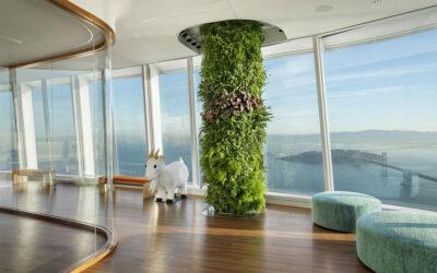 I pilastri verdi di un ufficio a San Francisco