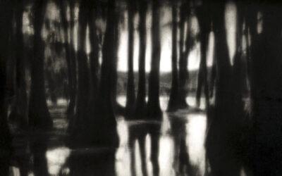 Rocky Schenck, il poeta delle visioni oscure