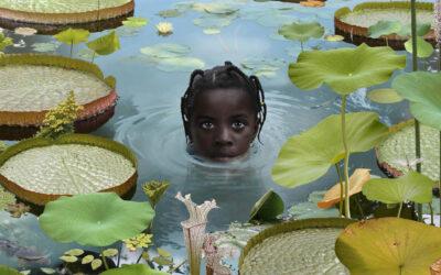Ruud van Empel, l'arte della manipolazione fotografica