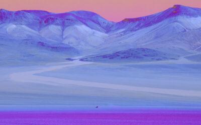 Color Therapy, il mondo a colori di Paolo Pettigiani