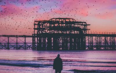 Cieli rosa e riflessi magici, gli scatti di Joel Thorpe