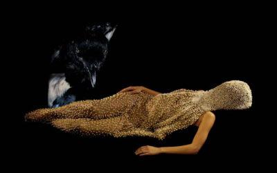 Fotografia e scultura, le opere di Naia del Castillo