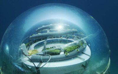 L'agricoltura del futuro è sott'acqua: il Nemo's Garden in Liguria