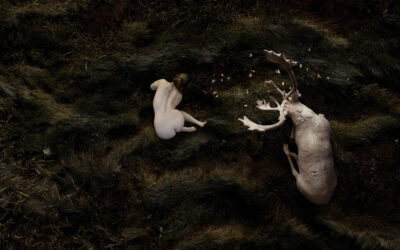 """Corpo umano e natura, """"Hierophanies"""" di Bear Kirkpatrick"""