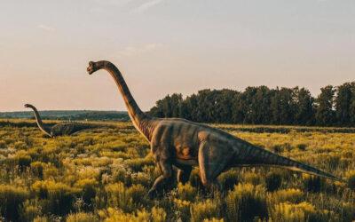 Dinosauri nell'erba alta